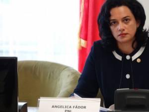 Angelica Fădor îi atrage atenţia ministrului Justiţiei asupra problemelor personalului de probaţiune care se ocupă de reintegrarea deţinuţilor