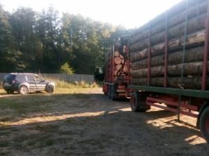 Transporturi de masă lemnoasă, pe aceleasi acte, depistate în zona Boroia