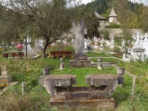 În memoriam Petru Comarnescu